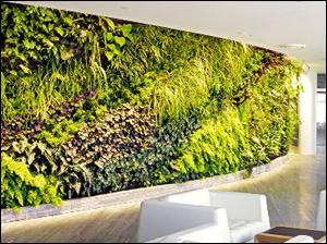 Charming Green Walls